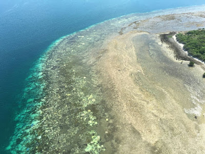 Worst bleaching on record for Great Barrier Reef
