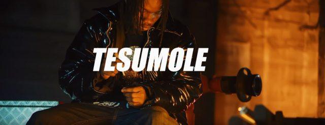 Download Video | Naira Marley - Tesumole