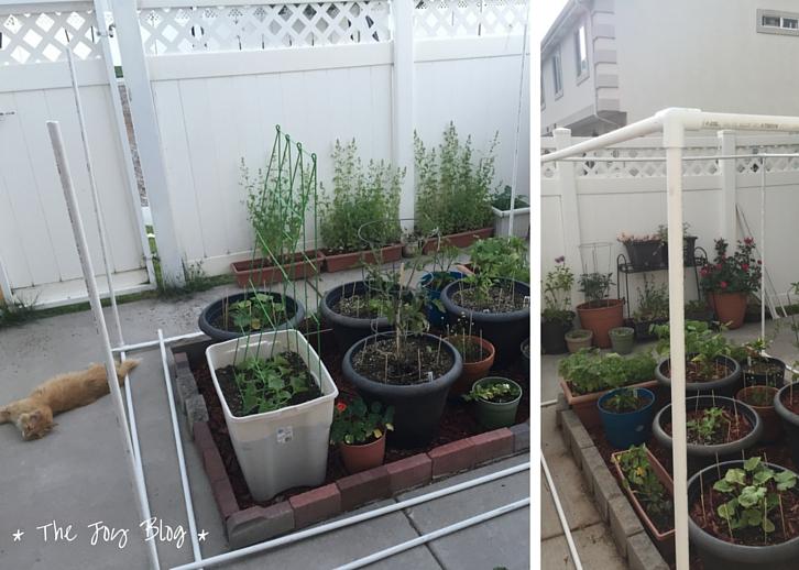 DIY: Freestanding Shade Canopy for Garden - THE JOY BLOG