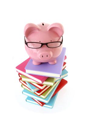 Ibm 401 k plus plan safe investment options