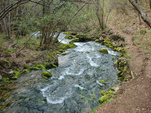 Река и тропинка рядом с ней