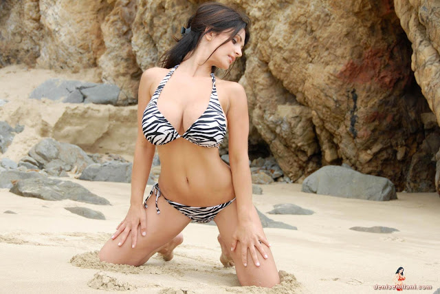 Denise Milani Beach Zebra HD Sexy Photoshoot Hot Photo 36