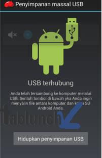 Penyimpanan massal USB