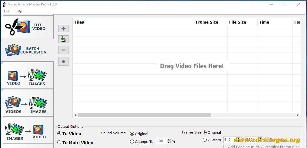 Video Image Master Pro Full
