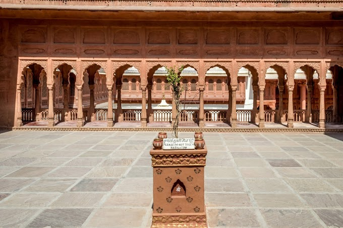 A Tryst with Royalty - Bikaner & Jaisalmer - Day 2 - Junagarh Fort - Part 2