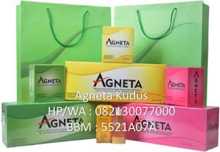 Agneta Kudus