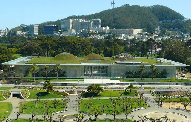 Học viện khoa học California