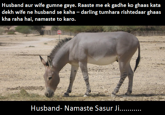 Husband Wife Latest Whatsapp Jokes