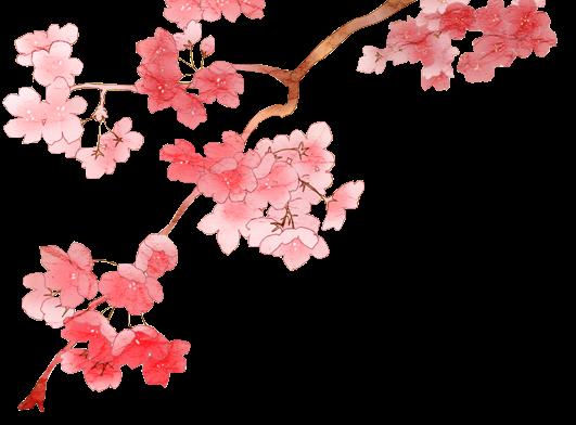 render flores de cerezo