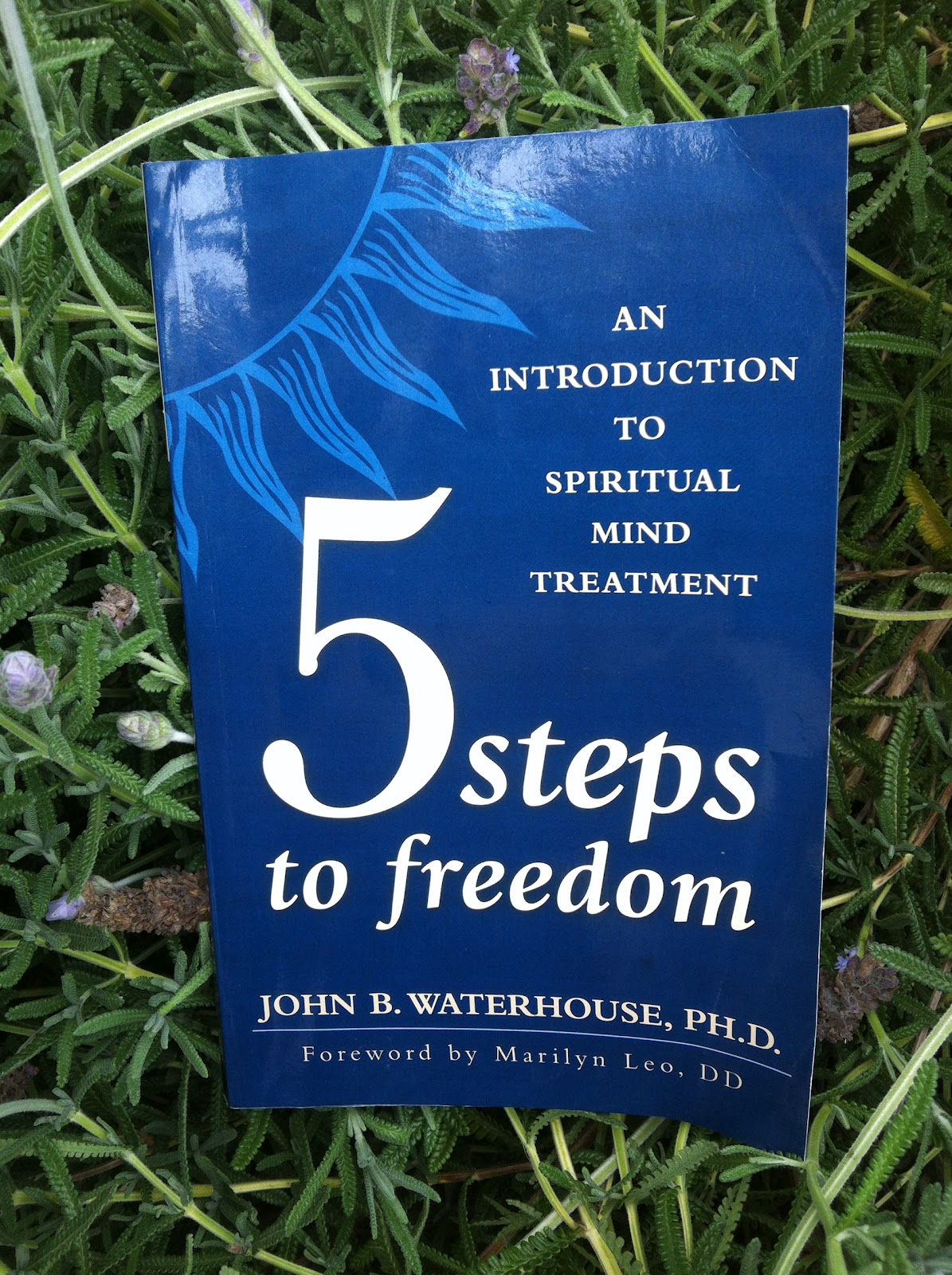 Blog Science Of Mind Book Review 5 Steps To Freedom