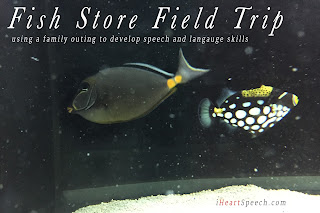 fish in a tank  with information that leads to a blog post about using a fish store field trip to build speech and language skills