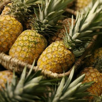 Pineapple Week – Hotel à Mesa
