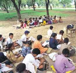 Rawalpindi Board 5th Class Result 2019   PEC   Punjab Education