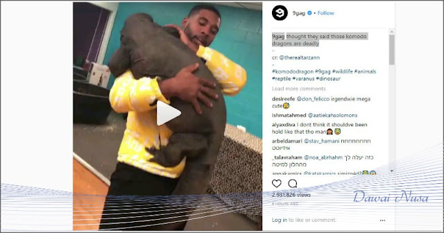Heboh Video Pria Peluk 'Komodo', Ini Klarifikasi Pihak TNK