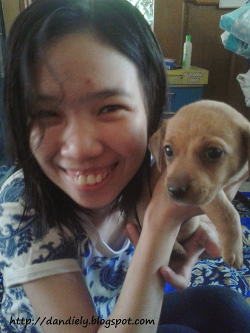 Selfie with puppy Poknat / Cho