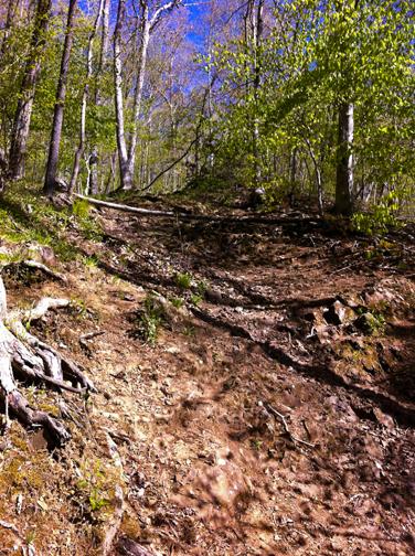 Erosion at Bluff Head - Mattabesett Trail