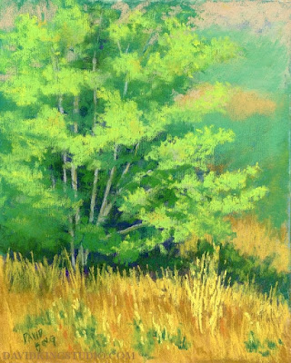 art painting pastel landscape plein air nature tree grass