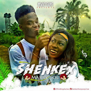 Download Song, Marry you by Shenkex