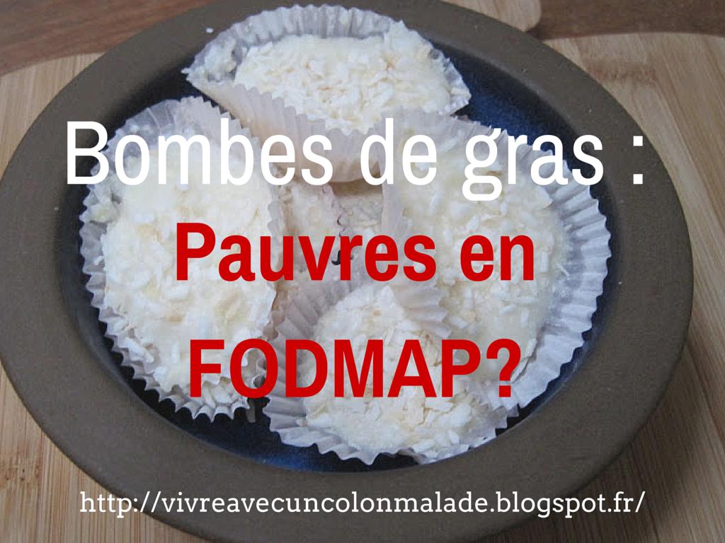 bombes de gras pauvres en FODMAP