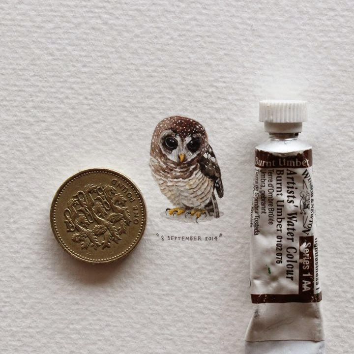 05-Owl-Lorraine-Loots-Miniature-Paintings-Commemorating-Special-Occasions-www-designstack-co