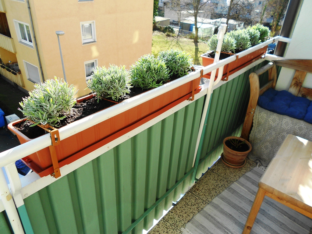 knitbee balkonbepflanzung. Black Bedroom Furniture Sets. Home Design Ideas