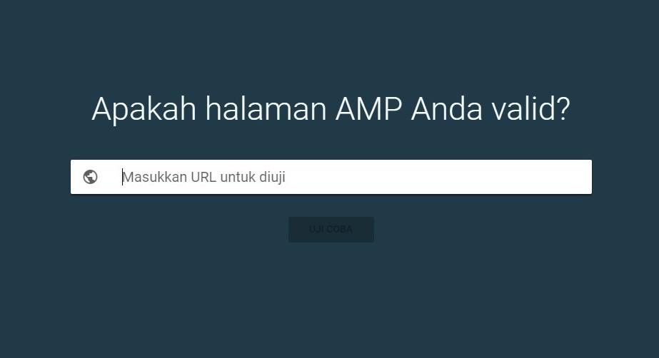 Template AMP Premium Blogspot