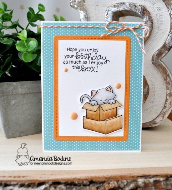 Birthday Cat in Box Card by Amanda Bodine |  Newton Loves Boxes Stamp Set by Newton's Nook Designs #newtonsnook #handmade