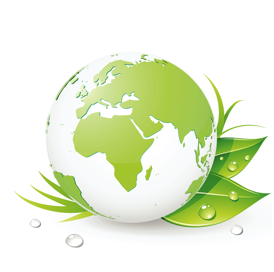 Three Green Earth Cleaning Ways to Mold Removal
