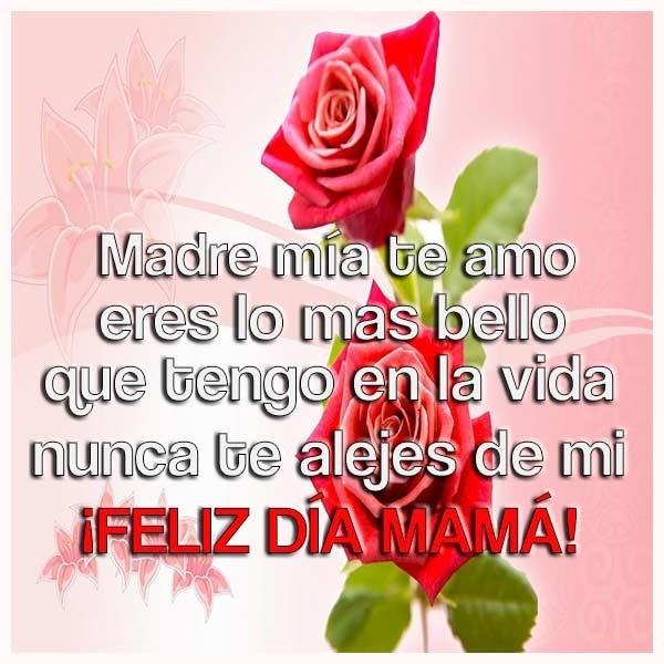 Dia De La Madre Imagenes Con Flores Y Frases Bonitas Trato O Truco