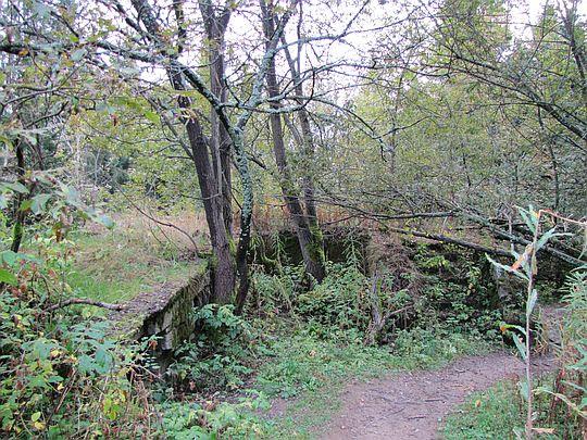 Ruiny bacówki na polanie Wyrobki.