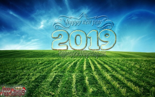 Happy New Year 2019 Nature HD Pics For Full HD Smartphones