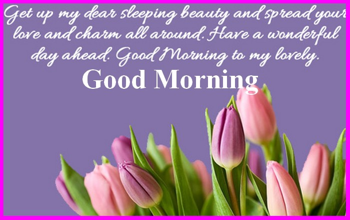 Good Morning N Night Tips: Good Morning My Friends Sms