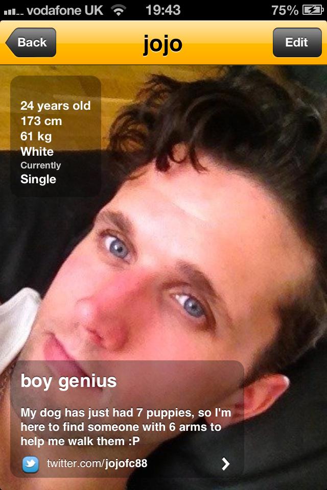 O perfil de Joe no Grindr, aplicativo que o inspirou a criar o vídeo de Tiktok viral. (Foto: Reprodução / Grindr)