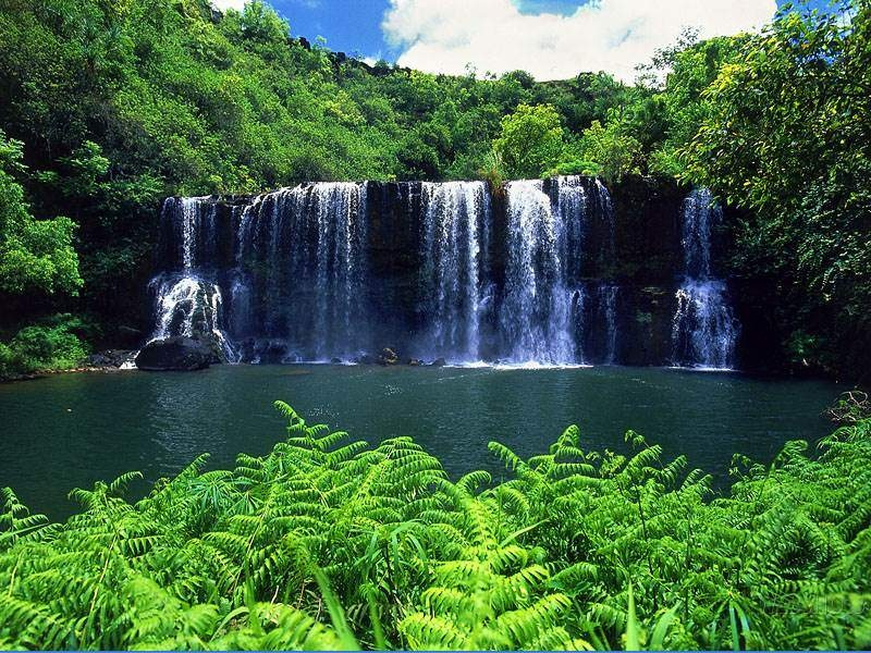 Best wallpaper in the world: Best nature wallpaper in the ...