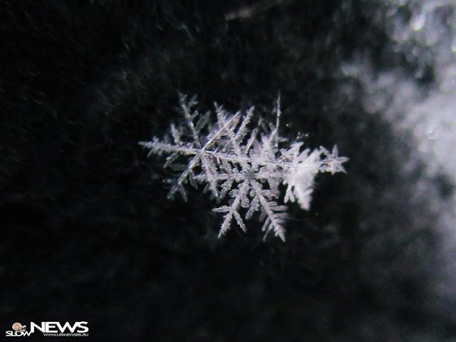 По Башкирии ожидается снег с дождём и сильные порывы ветра