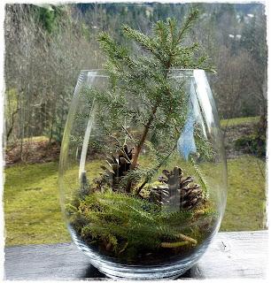 stempelige bergwelt wald im glas. Black Bedroom Furniture Sets. Home Design Ideas