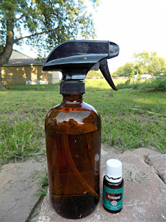All-Natural Peppermint Pest Spray - 25 Essential Oil DIYs RoundUp