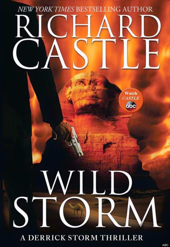 Review - Wild Storm by Richard Castle