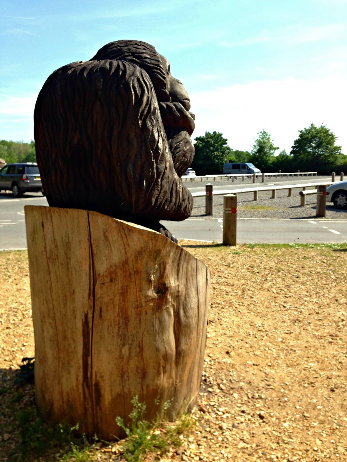 Carved wooden monkey by the Go Ape hut