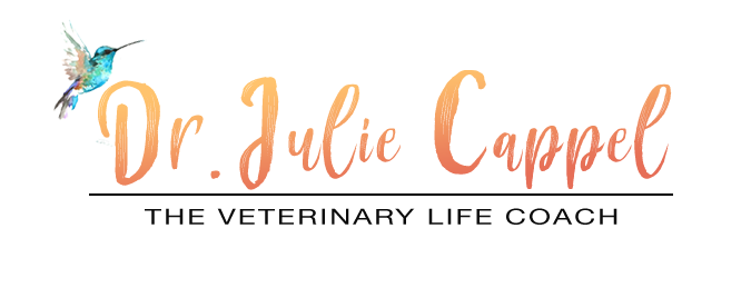 The Veterinary Life - With Dr. Julie Cappel