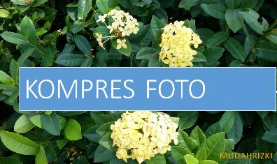 Cara Memperkecil foto di Android-resize file gambar Tanpa Mengurangi Kualitas jpg jadi png