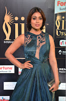 Shriya Saran in Beautiful Transparent Dark Gown IIFA Utsavam Awards 2017 066.JPG