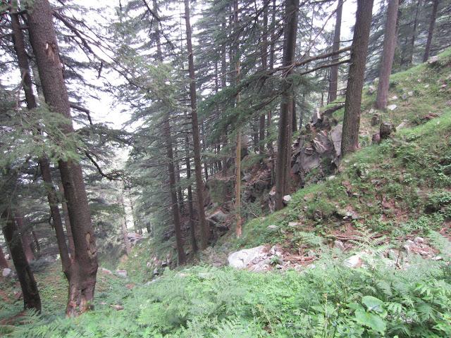 kalatop valley