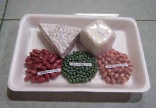 food model Nabati Kacang-kacangan