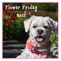 Flower Friday logo