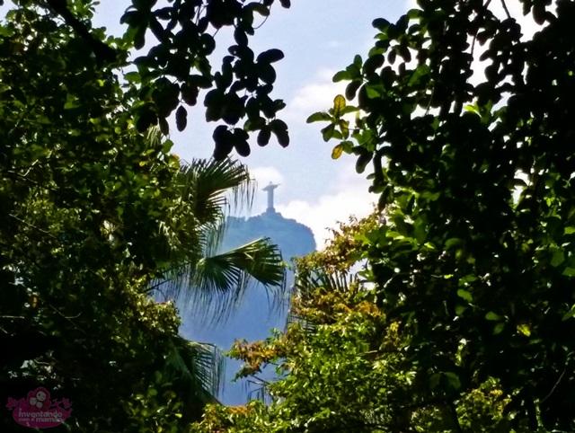 Jardim Botânico - Cristo Redentor