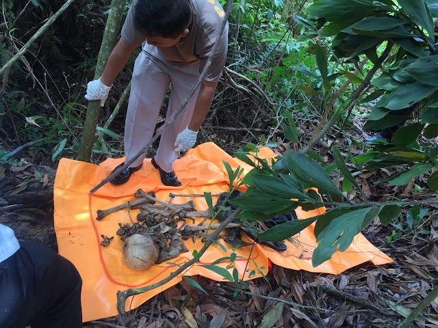 Seorang Pencari Kayu Temukan Tengkorak Mr.X Dilahan Kosong Semak Belukar Pekanbaru