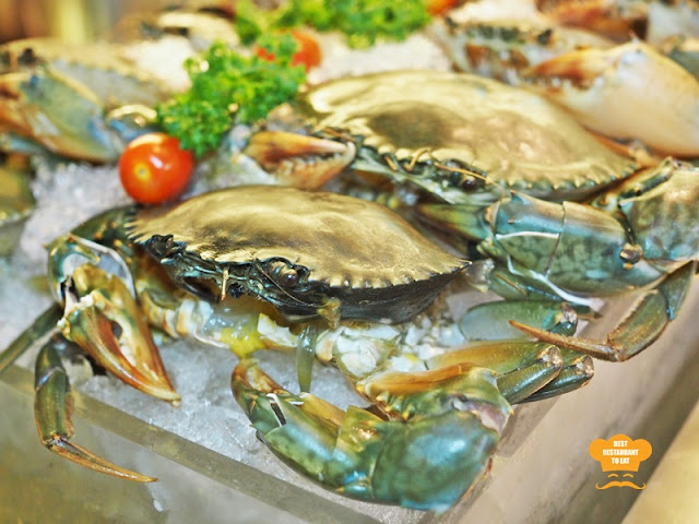 Weekend Seafood Buffet Mud Crabs