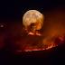 Incêndio na Inglaterra já destruiu área igual a 1.100 campos de futebol