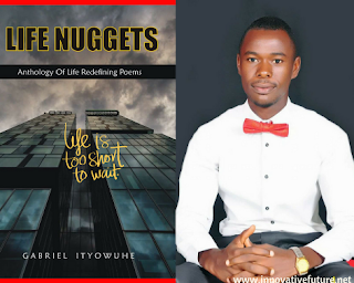 Life Nuggets By Gabriel Ityowuhe